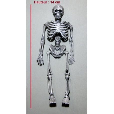 Squelette 1er prix 14 cm