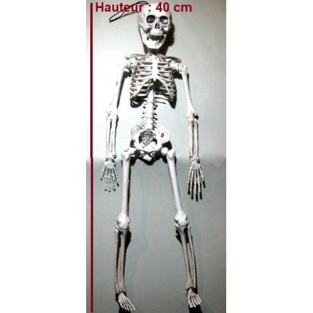 Squelette 40 cm articulé